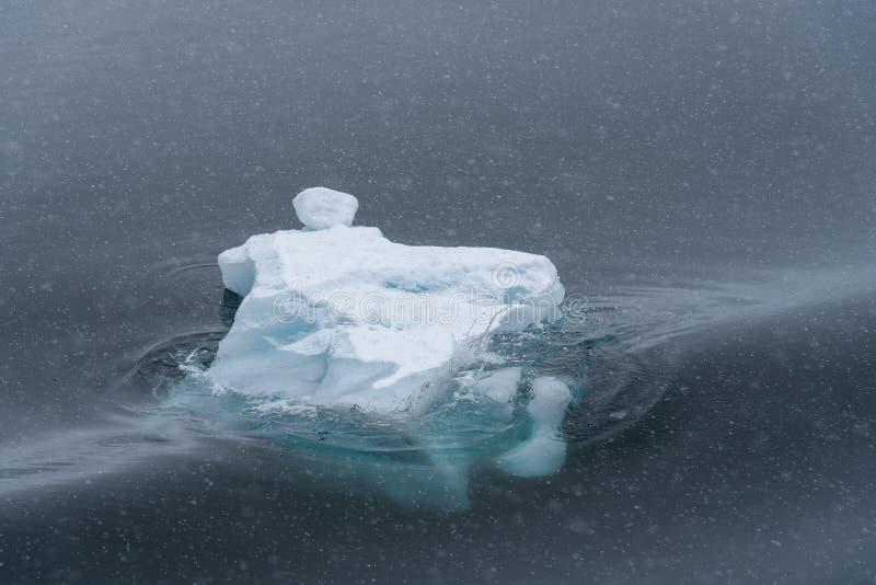 在雾和漂浮覆盖的雕刻的冰山在南极洲的黑暗的水域中 免版税库存图片