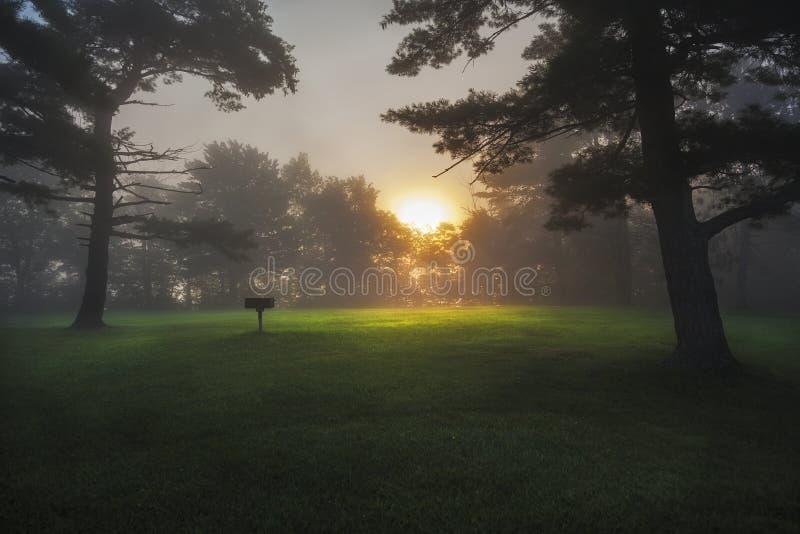 在雾撒切尔公园下的日出 免版税库存照片