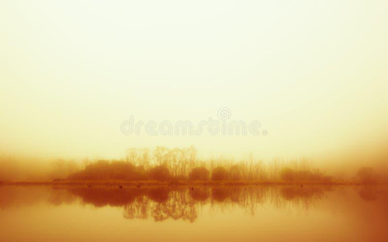 在雾浸没的风景 免版税库存图片