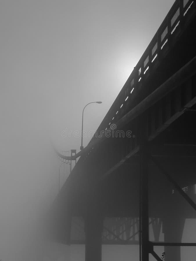 在雾的塔科马港狭窄的桥梁 免版税图库摄影