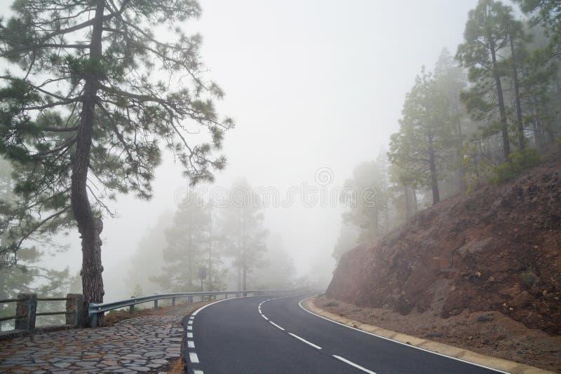 在雾的山路 免版税图库摄影