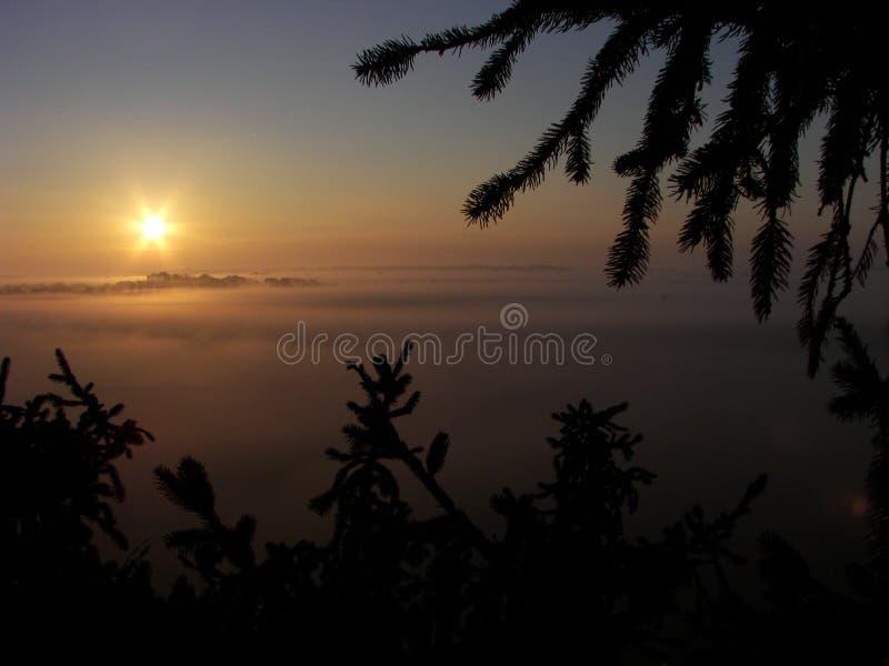 在雾的日出 免版税库存照片