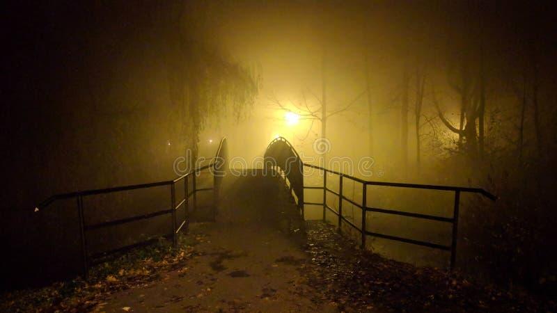 在雾的步行 库存图片