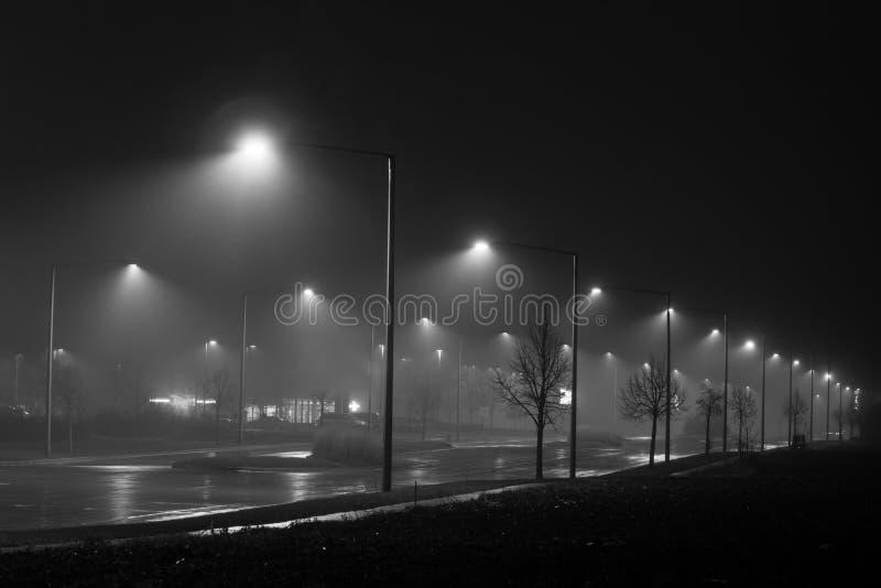 在雾的街灯 库存图片