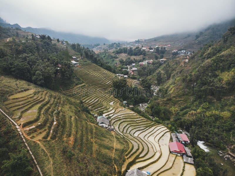 在露台的山农厂风景老街省,Sapa越南,越南西北部的米领域 免版税库存照片
