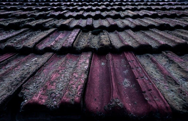 在青苔的老铺磁砖的屋顶 库存图片