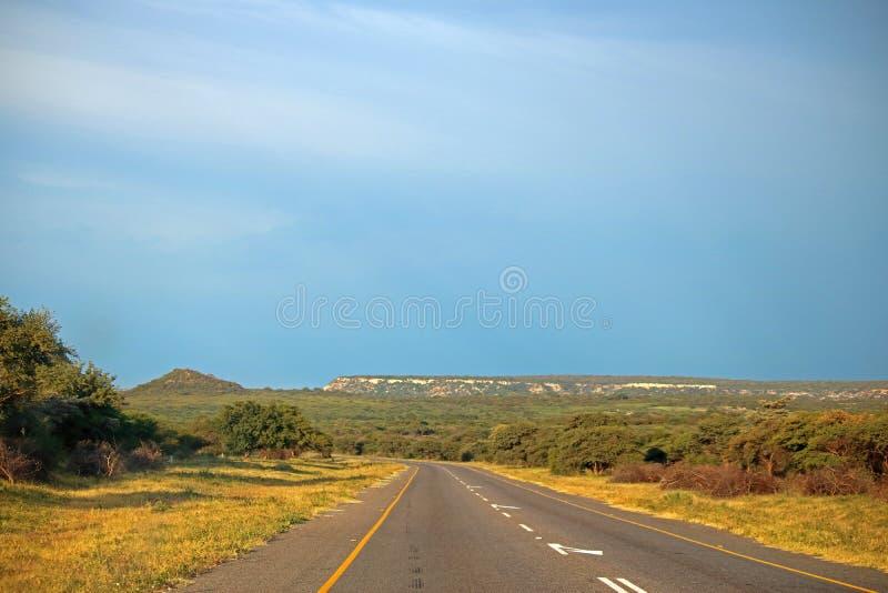 在非洲风景的涂焦油路 免版税库存图片