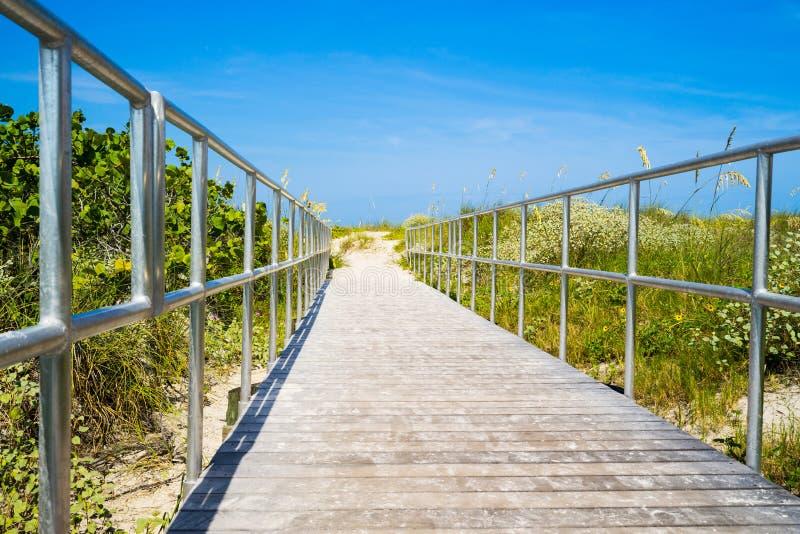 在靠岸的海燕麦中的木板走道在佛罗里达 免版税图库摄影