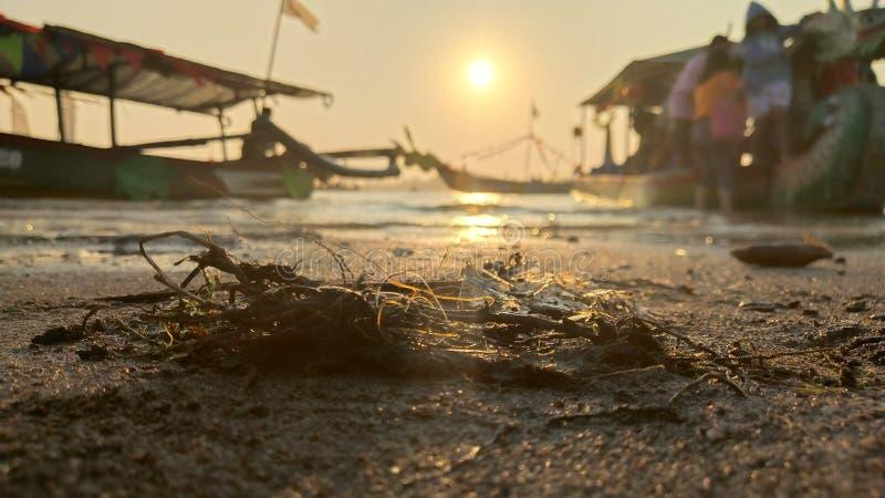 在靠海滨的盐水湖的暮色大气日落的是很美好与金黄颜色 免版税库存照片