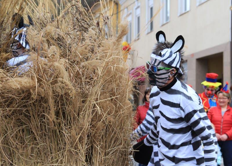 在面具传统狂欢节的斑马服装在利蒂亚,斯洛文尼亚 图库摄影