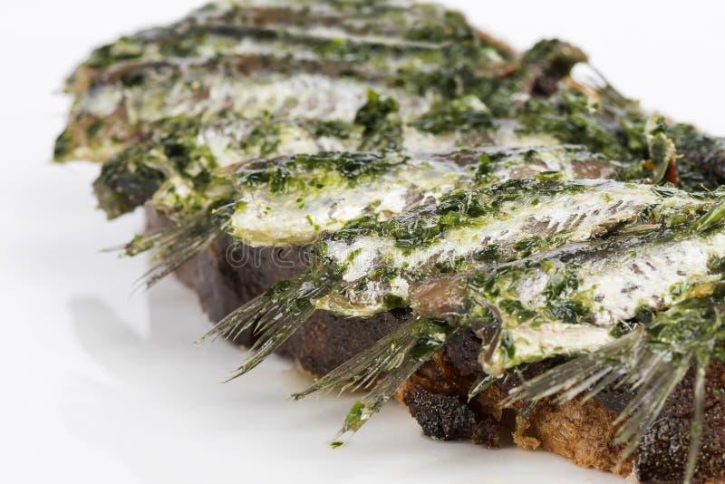 在面包油和荷兰芹的鲥鱼 图库摄影