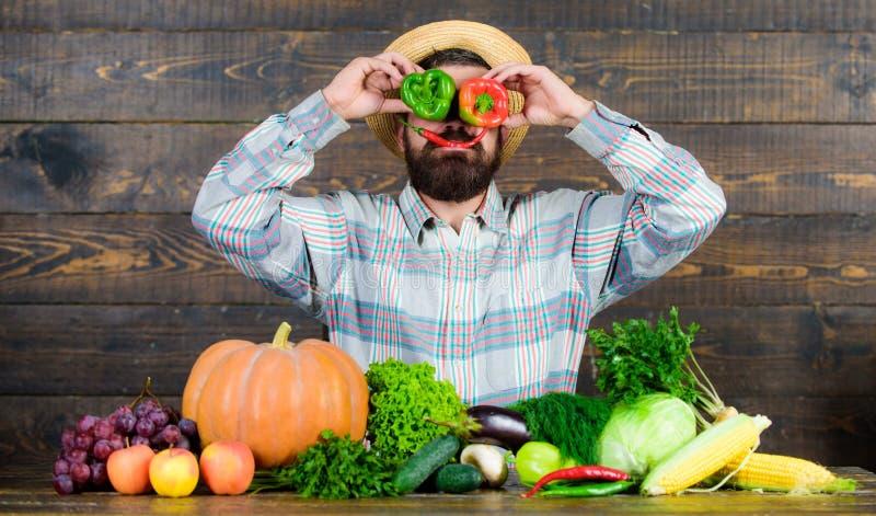 在面孔前面的有胡子的农夫举行胡椒 胡椒收获概念 有的农夫乐趣木背景 人举行 库存照片