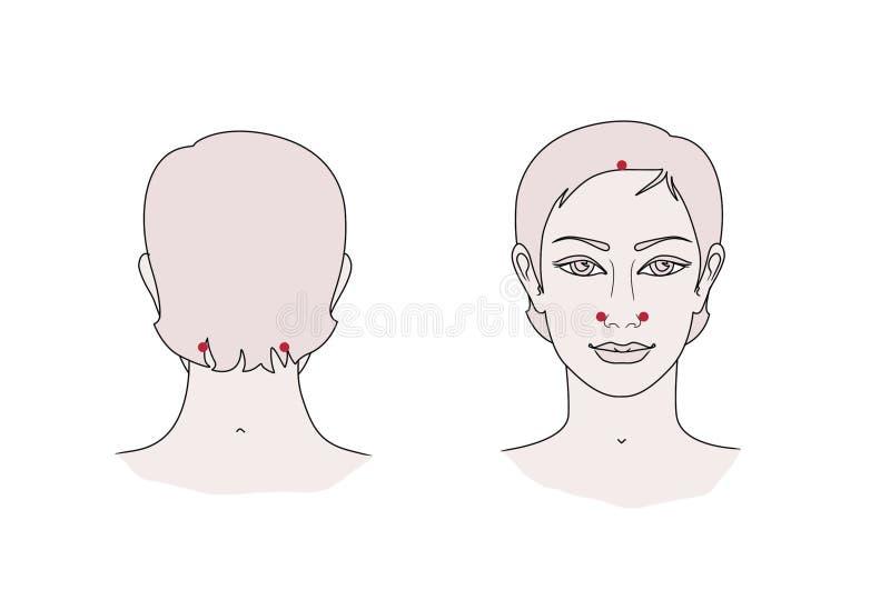 在面孔和脖子的活跃针灸点 r 向量例证