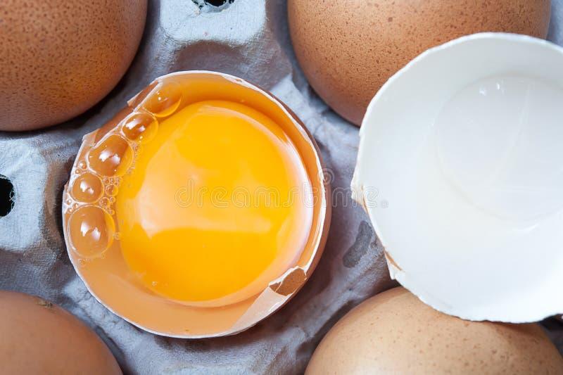 在面板的鸡蛋 图库摄影