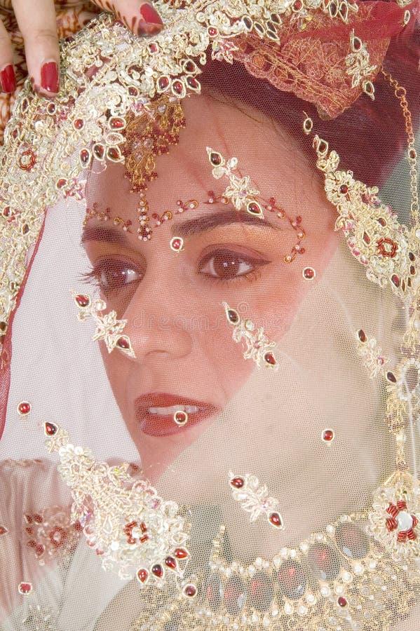在面纱之下的新娘北印度语 免版税图库摄影
