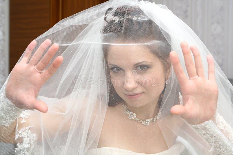 在面纱之下的新娘 库存图片