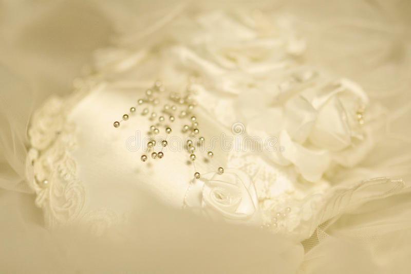 在面纱的珍珠 免版税库存照片