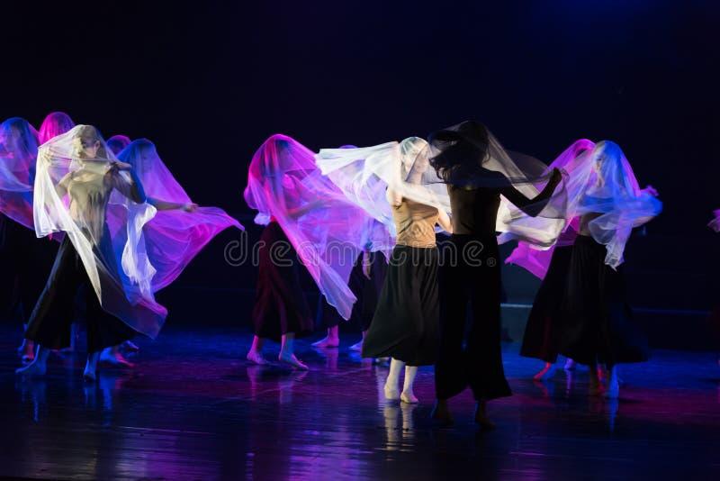 在面纱2下的真实的面孔--舞蹈戏曲驴得到水 免版税图库摄影
