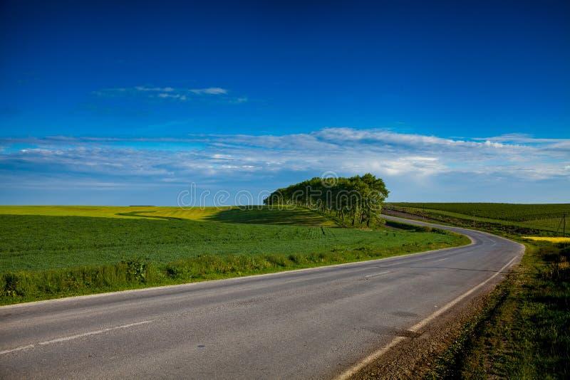 在领域中的柏油路 免版税图库摄影