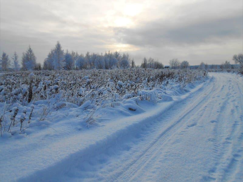 在领域的冬天路 库存图片