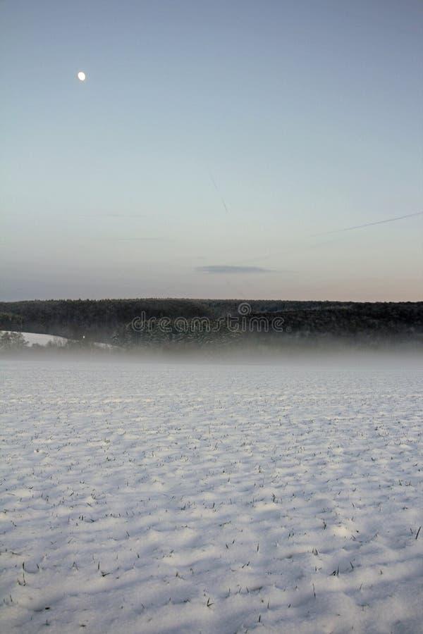 在领域的冬日 免版税库存照片