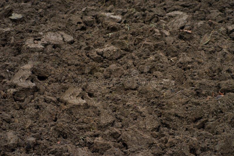 在领域的布朗土壤 免版税库存照片