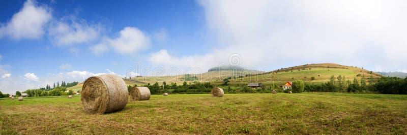 在领域的干草卷在收获以后 免版税库存照片