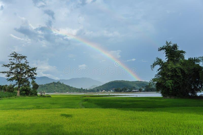 在领域的彩虹在Dak Lak 库存照片