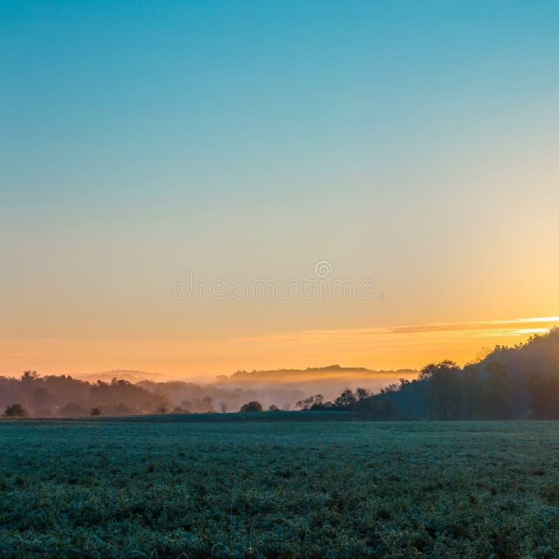 在领域的方形的有薄雾的早晨日出 免版税库存图片