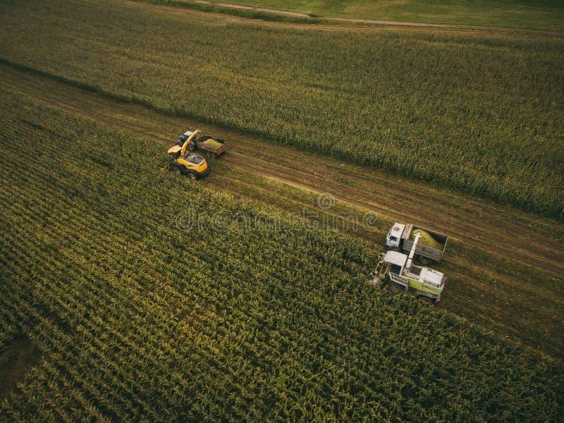 在领域的机器收割玉米 E 图库摄影