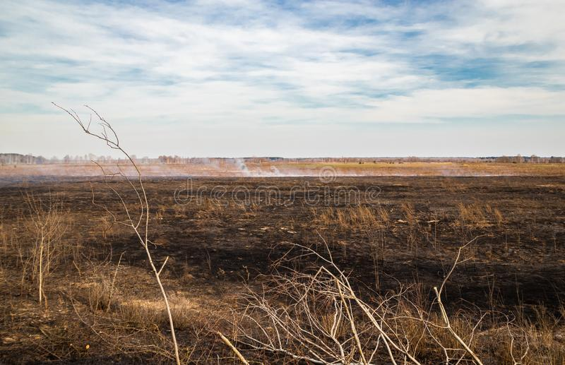 在领域的紧急状态,火烧与动物的干草 免版税库存图片