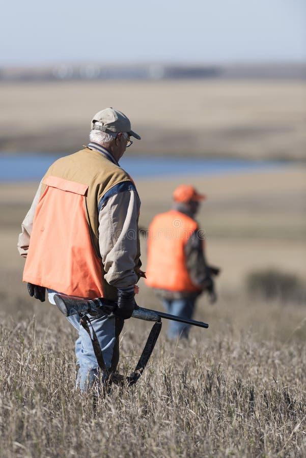 在领域的野鸡猎人在北达科他 库存图片