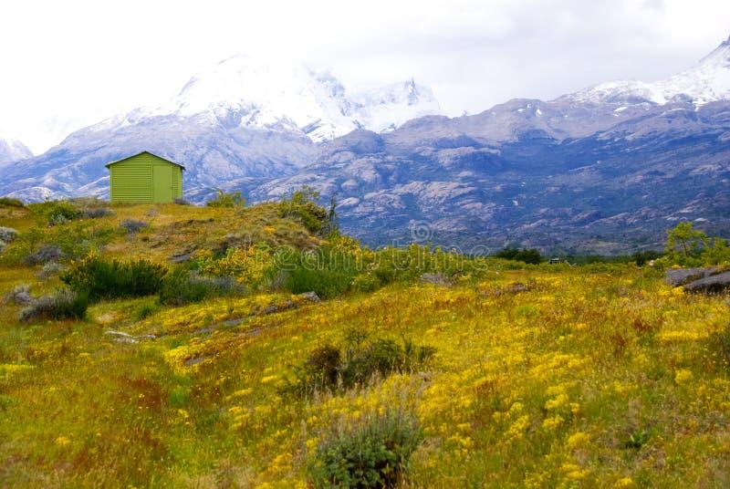 在领域,巴塔哥尼亚的绿色小屋 免版税库存照片