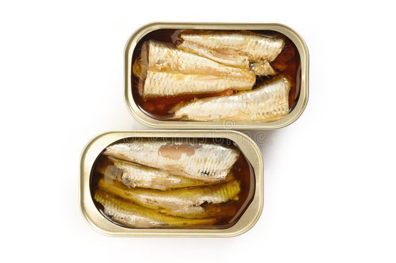在额外处女橄榄油和辣椒的沙丁鱼在白色backgroun 免版税库存照片