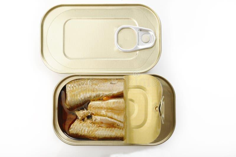 在额外处女橄榄油和辣椒的沙丁鱼 免版税库存图片