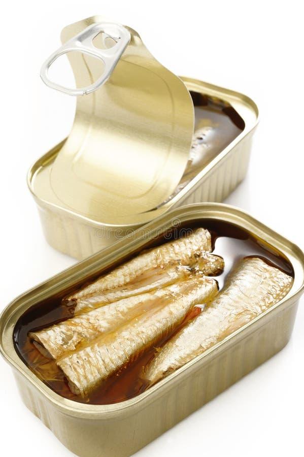 在额外处女橄榄油的沙丁鱼 免版税库存照片