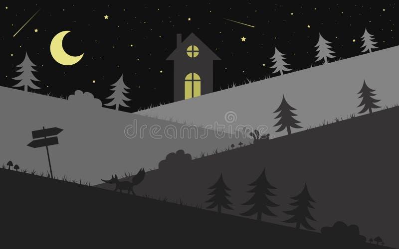 在风景上的繁星之夜,例证传染媒介 向量例证