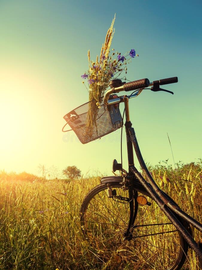 在风景的自行车 免版税库存图片