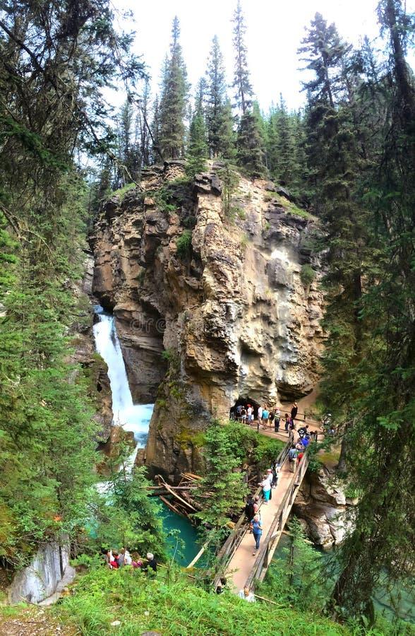 在风景约翰斯顿峡谷,班夫国家公园的水小瀑布 免版税库存照片