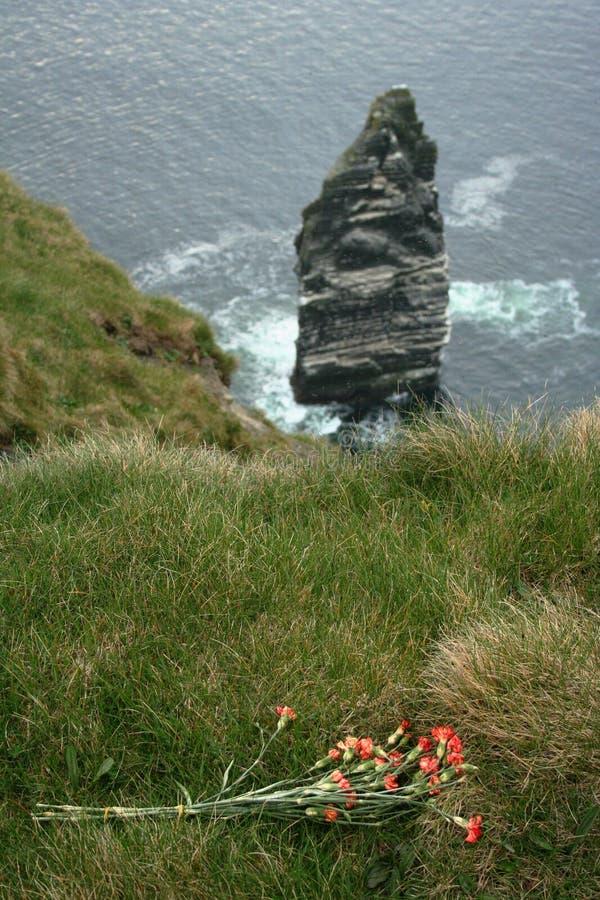 在风景莫赫悬崖边缘的哀悼的花束在Branaunmore岩石附近的 库存照片
