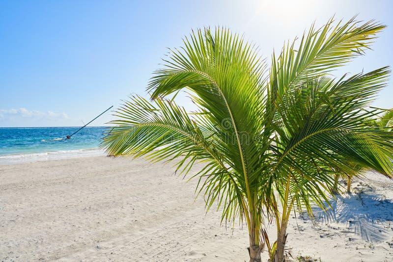 在风暴以后的加勒比风船海难 免版税图库摄影