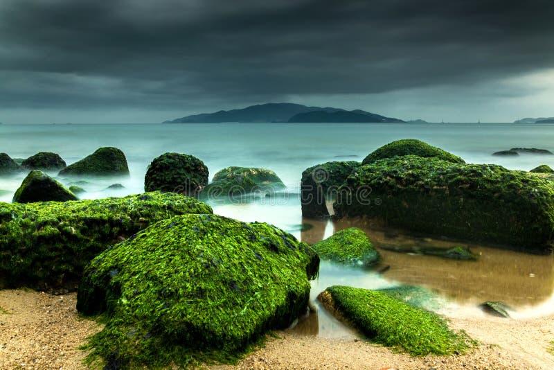 在风暴期间,与绿色青苔的自然海景包括岩石在海滩和黑暗,剧烈的天空 免版税库存照片