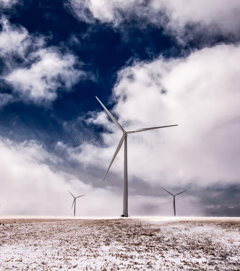 在风的巨人Windills 库存照片