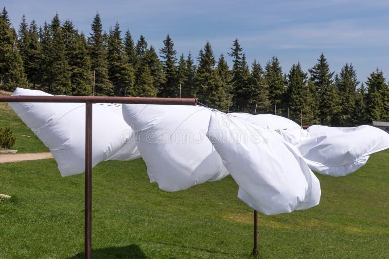 在风的床单干燥 免版税图库摄影
