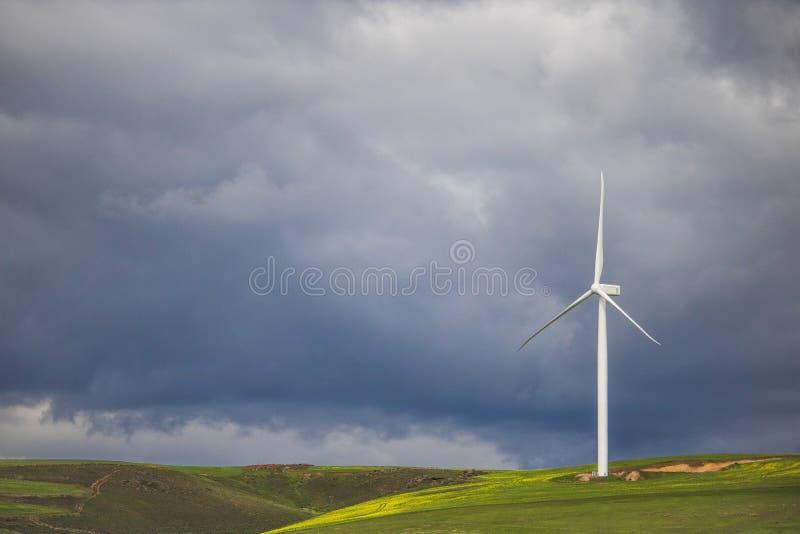 在风轮机在绿色领域-科里登,西开普省,南非的剧烈的雷暴 免版税库存图片