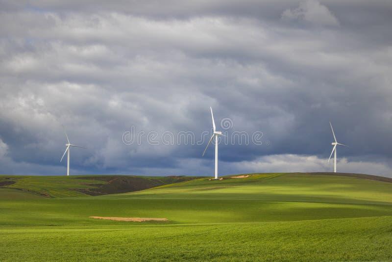 在风轮机的剧烈的雷暴在绿色领域-科里登,西开普省,南非 免版税库存图片