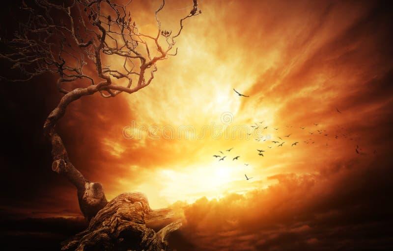 在风雨如磐的天空的干结构树 免版税库存图片