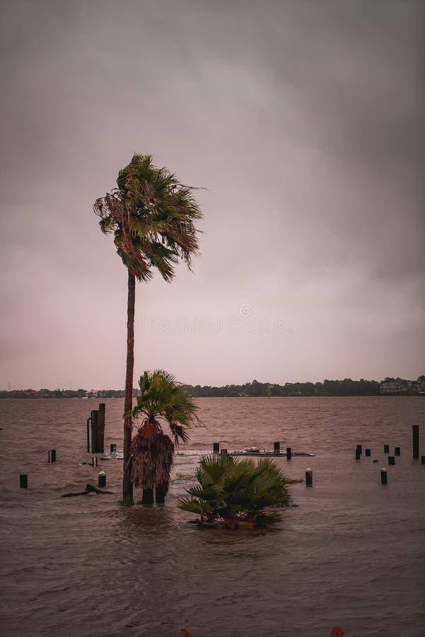 在飓风哈维期间的被充斥的街道 免版税库存照片