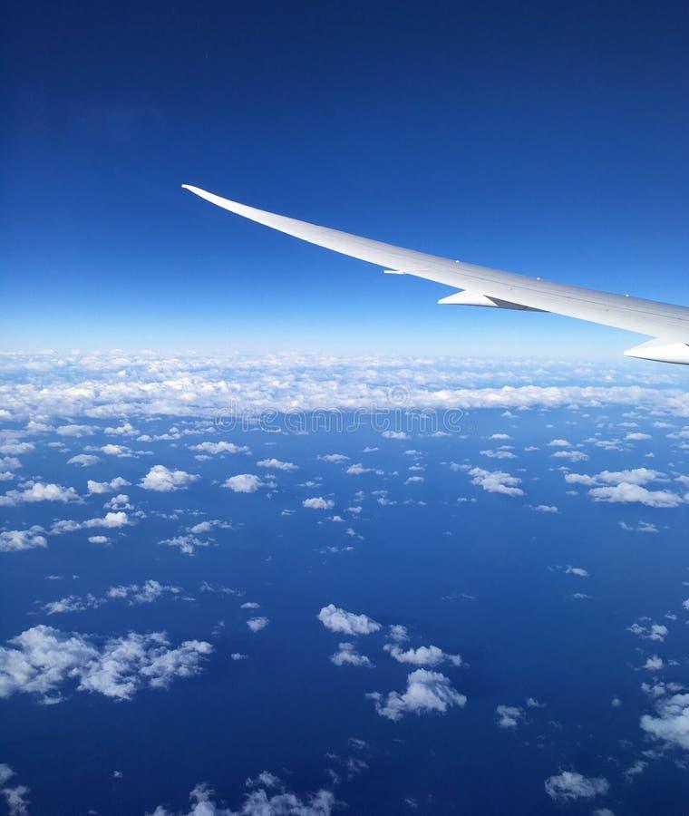 在飞机上 免版税库存照片