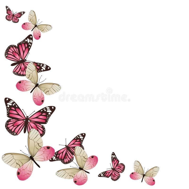 在飞行中桃红色蝴蝶框架  r o 向量例证